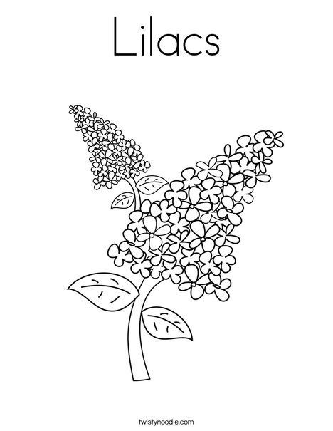 Lilacs Coloring Page