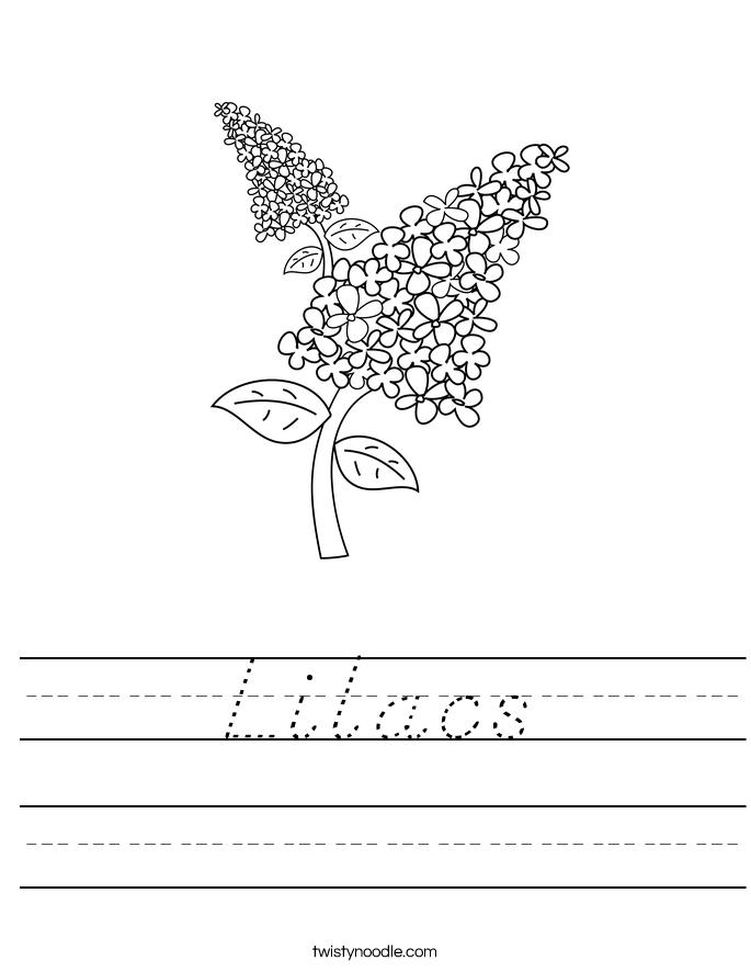 Lilacs Worksheet