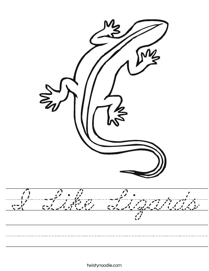 I Like Lizards Worksheet