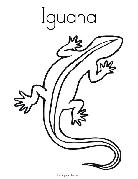 Iguana Coloring Page Twisty Noodle