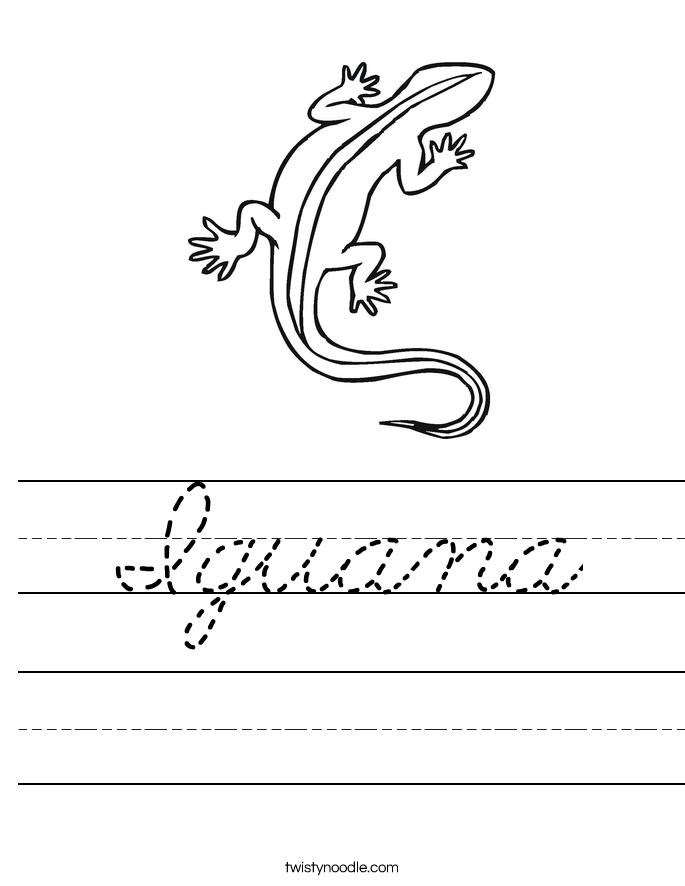 Iguana Worksheet