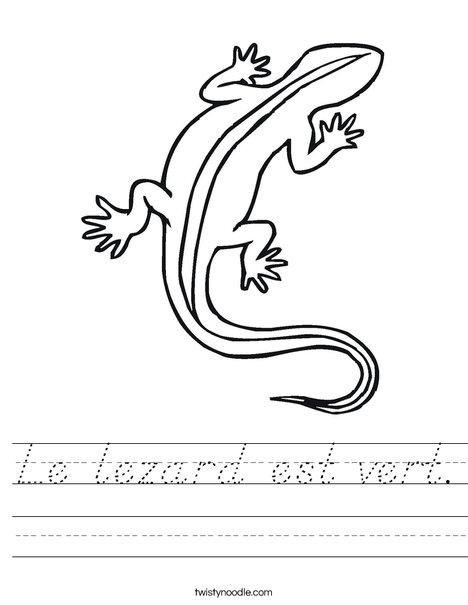 Lizard Worksheet