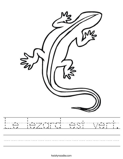 Lizard Worksheet