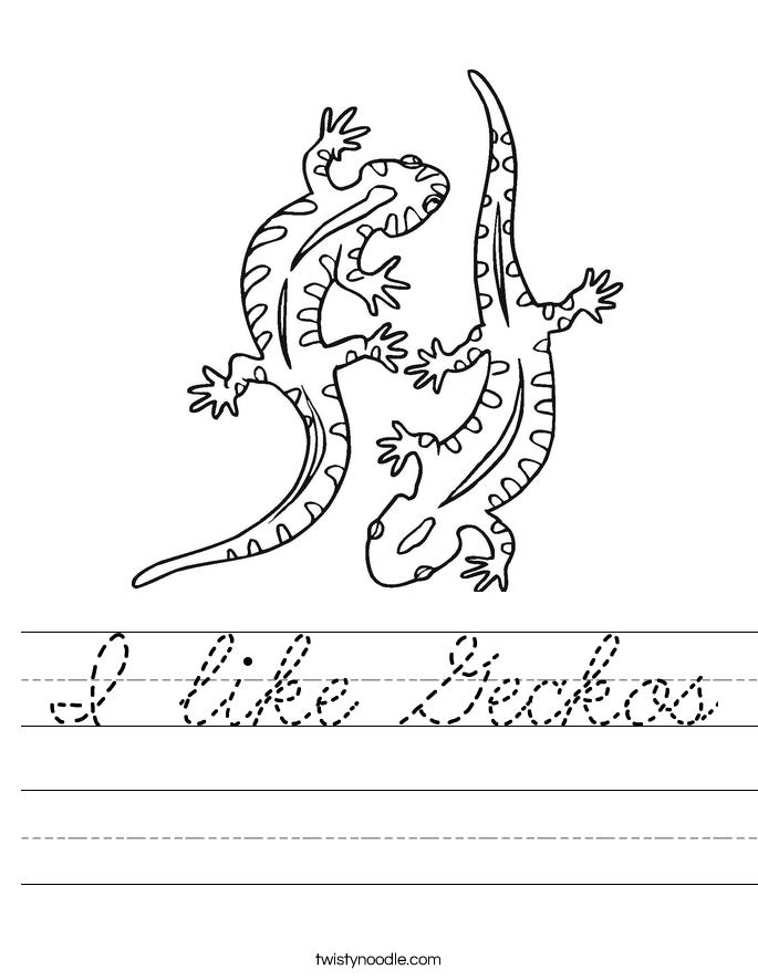I like Geckos Worksheet