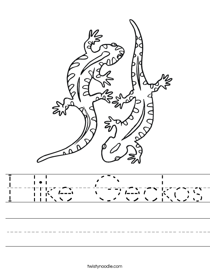 I like Geckos Worksheet