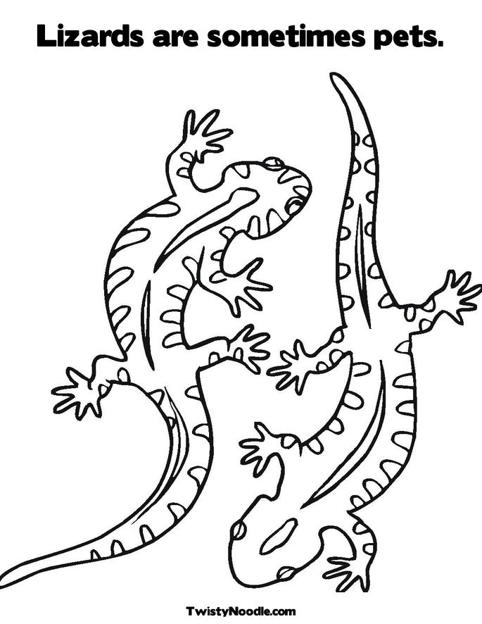 Aboriginal Animal Colouring Pages To Print : Aboriginal colouring pages page