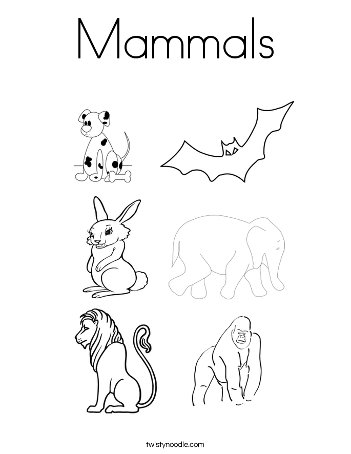 Mammals Coloring Page Twisty Noodle – Mammal Worksheets