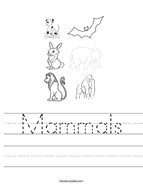 3 letter mammals mammals worksheet twisty noodle 20067
