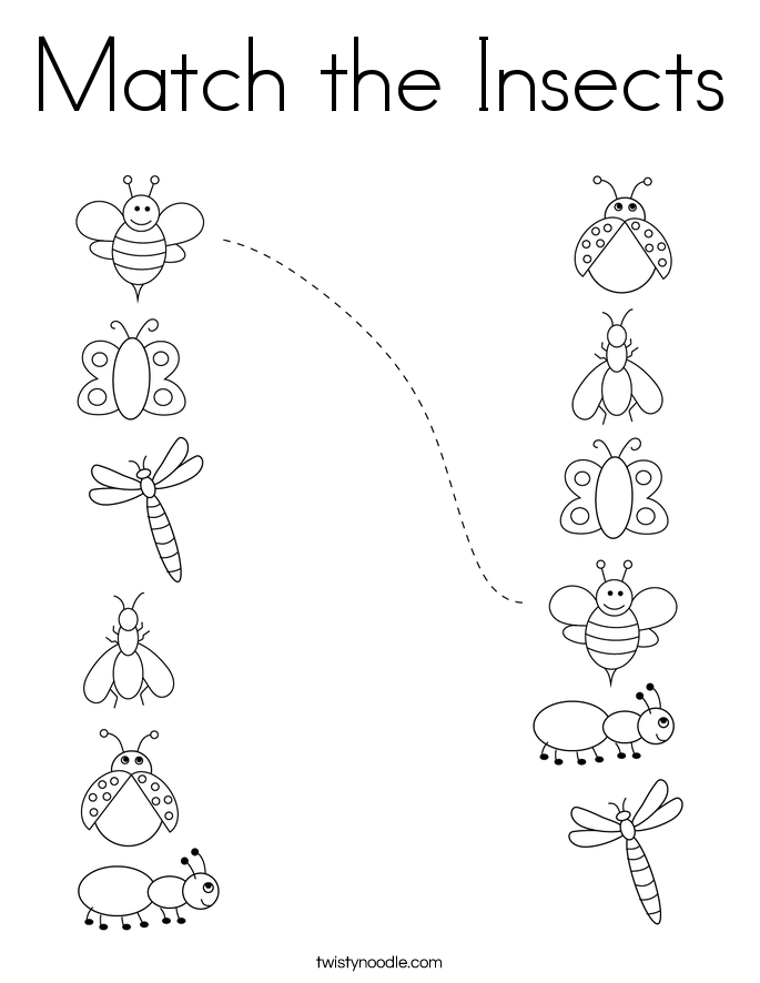 Match the Insects Coloring Page
