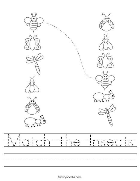 Match the Insects Worksheet
