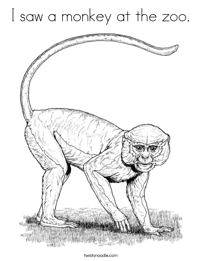 I Saw A Monkey At The Zoo. Coloring Page.