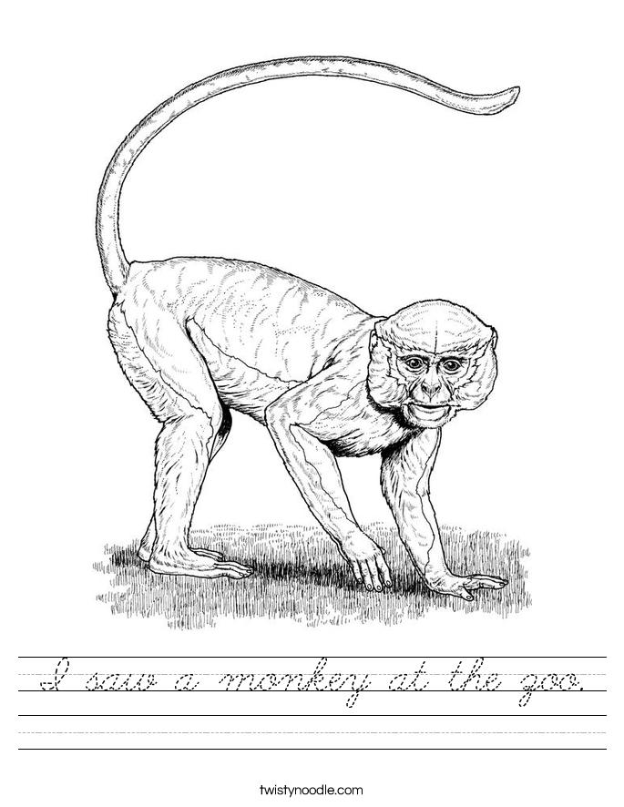 I saw a monkey at the zoo. Worksheet
