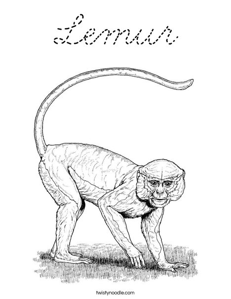 Realistic Monkey Coloring Page