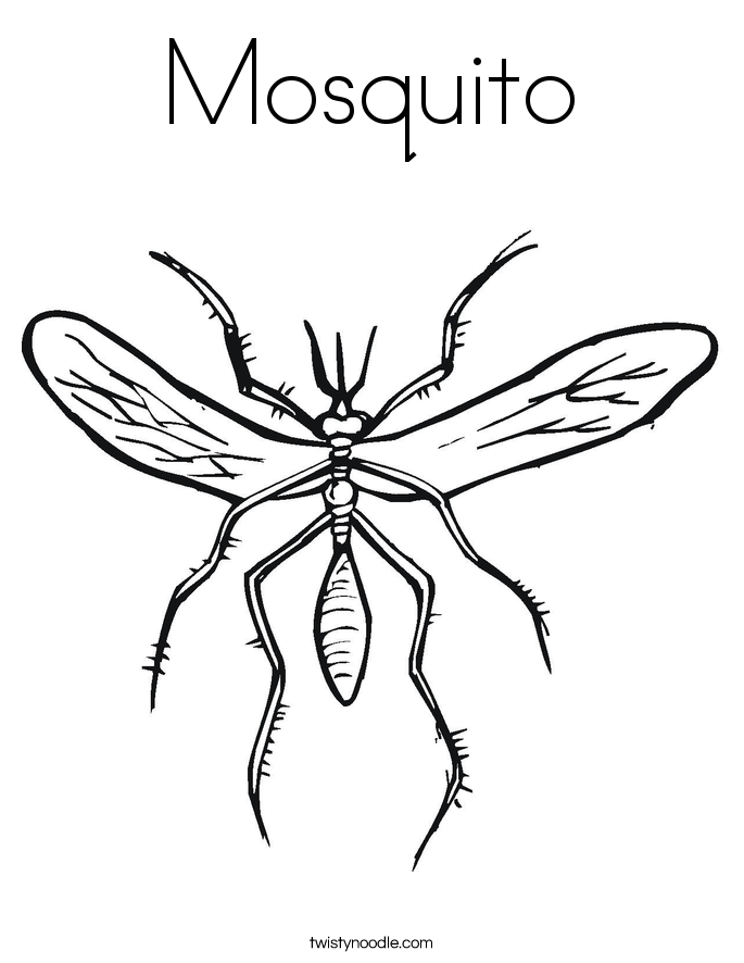 mosquito coloring page twisty noodle - Coloring Page Insect