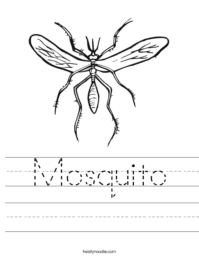 Mosquito Worksheet - Twisty Noodle