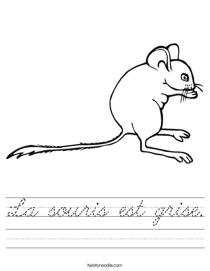 La souris est grise. Worksheet