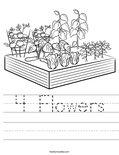 4 Flowers Worksheet