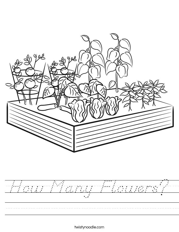How Many Flowers? Worksheet