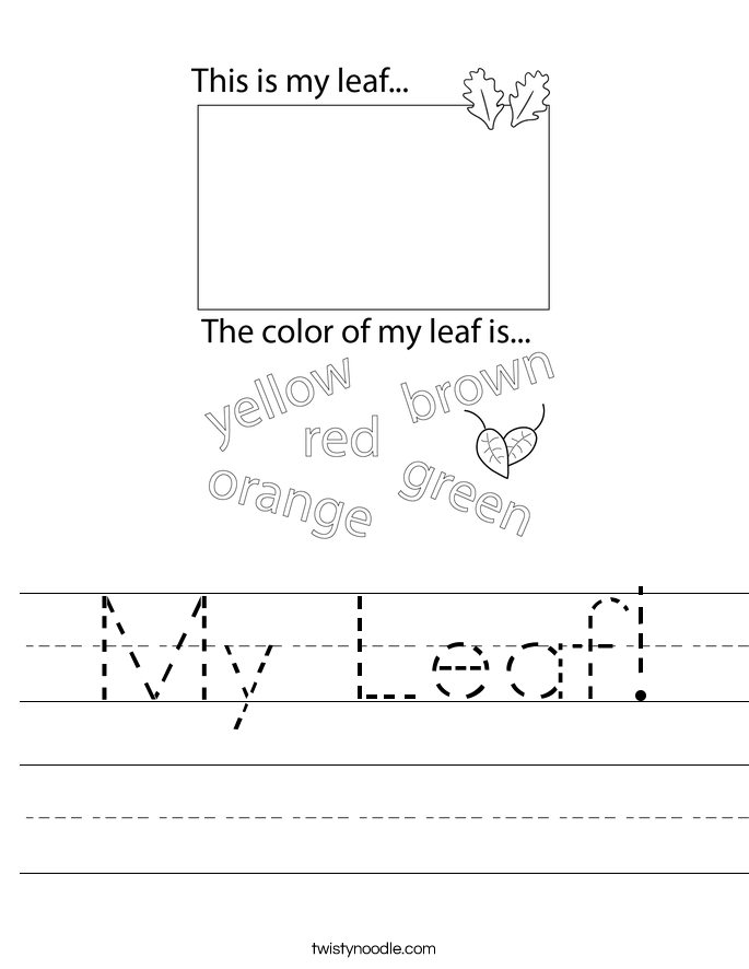 My Leaf! Worksheet