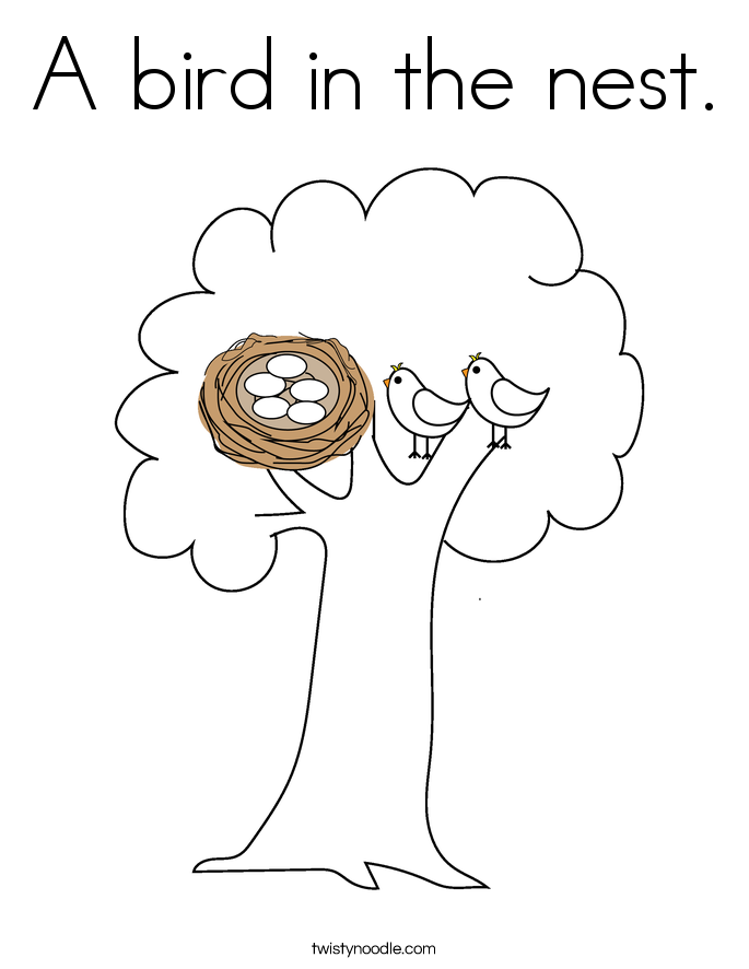 A bird in the nest Coloring Page Twisty Noodle