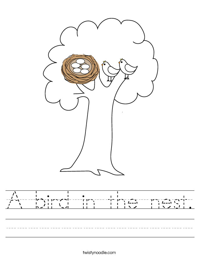 A bird in the nest. Worksheet