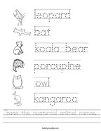 Trace the nocturnal animal names Handwriting Sheet