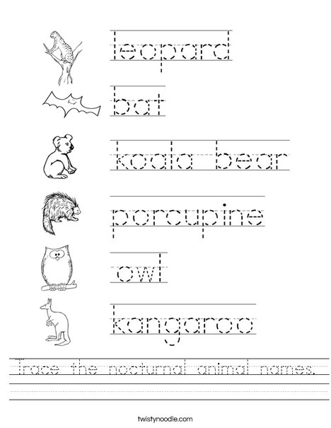 Trace the nocturnal animal names Worksheet - Twisty Noodle