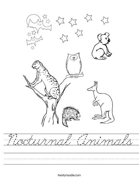 Nocturnal Animals Worksheet
