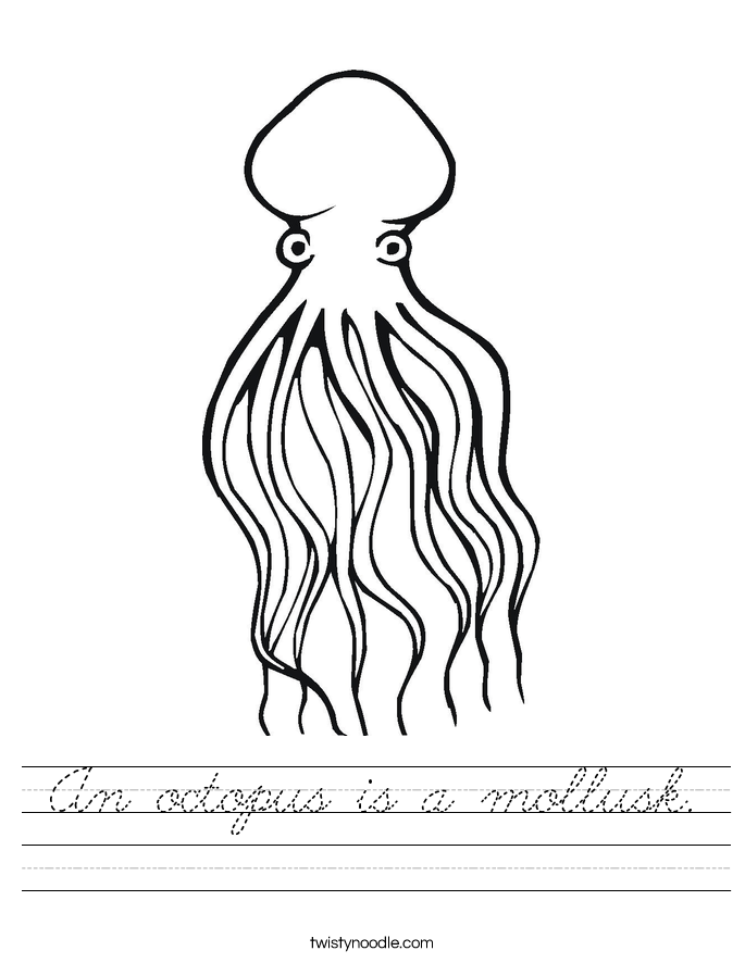 An octopus is a mollusk. Worksheet