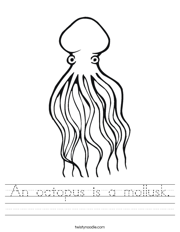 An octopus is a mollusk. Worksheet