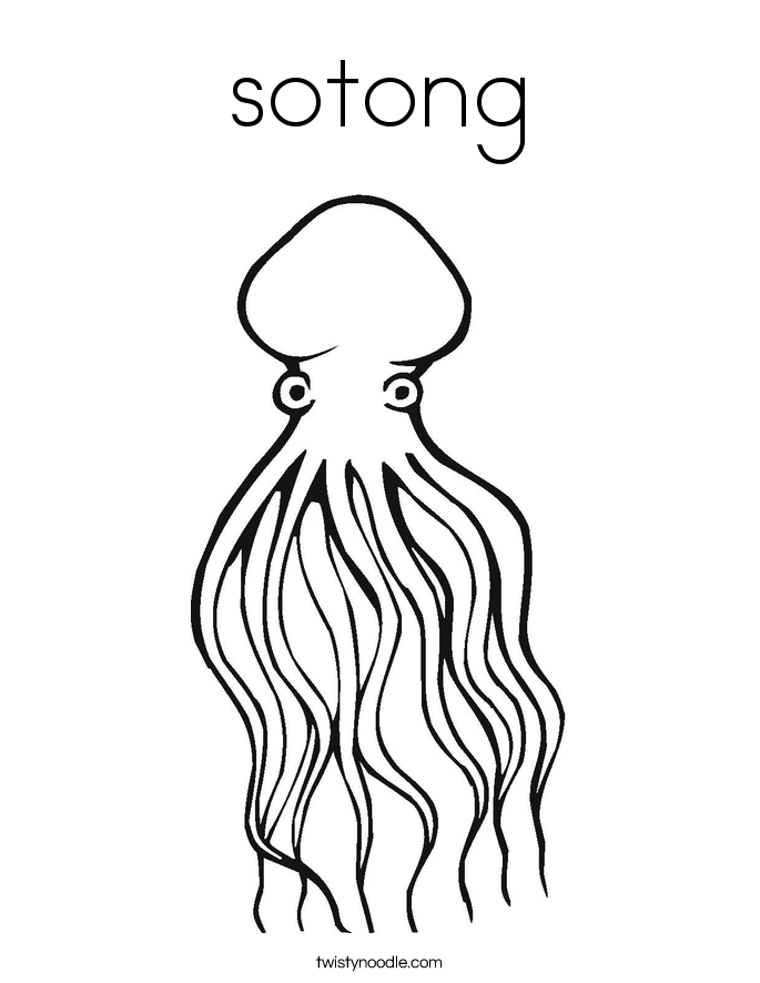 sotong Coloring Page