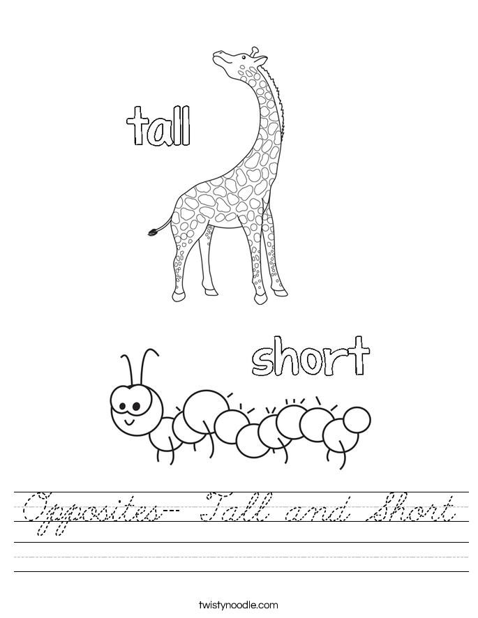 Opposites- Tall and Short Worksheet