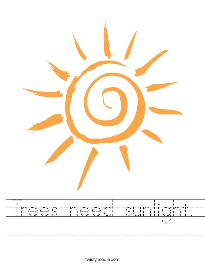 Trees need sunlight. Worksheet