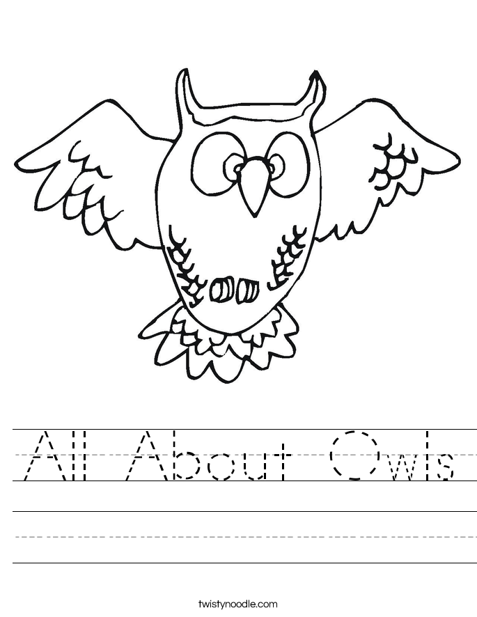 All About Owls Worksheet