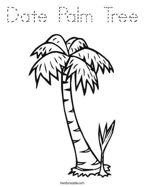 Date Palm Tree Coloring Page - Tracing - Twisty Noodle