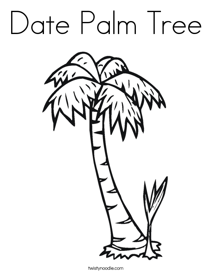 Date Palm Tree Coloring Page