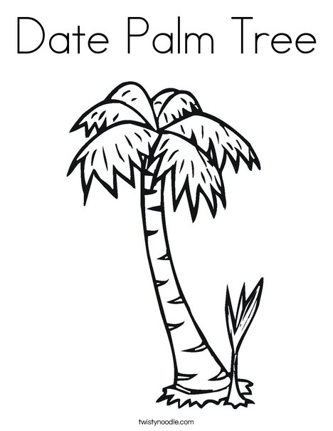 chicka chicka boom boom palm tree template - date palm tree coloring page twisty noodle