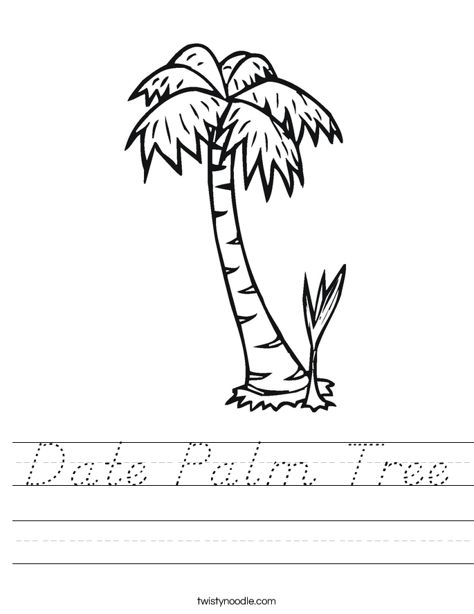 Date Palm Tree Worksheet
