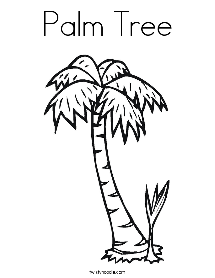 Palm Tree Coloring Page Twisty