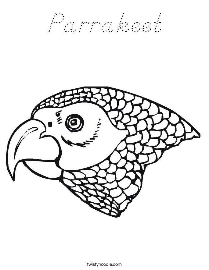 Parrakeet Coloring Page