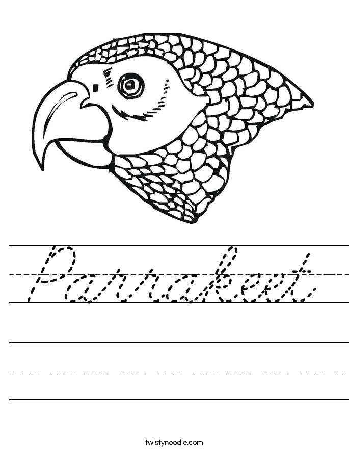 Parrakeet Worksheet