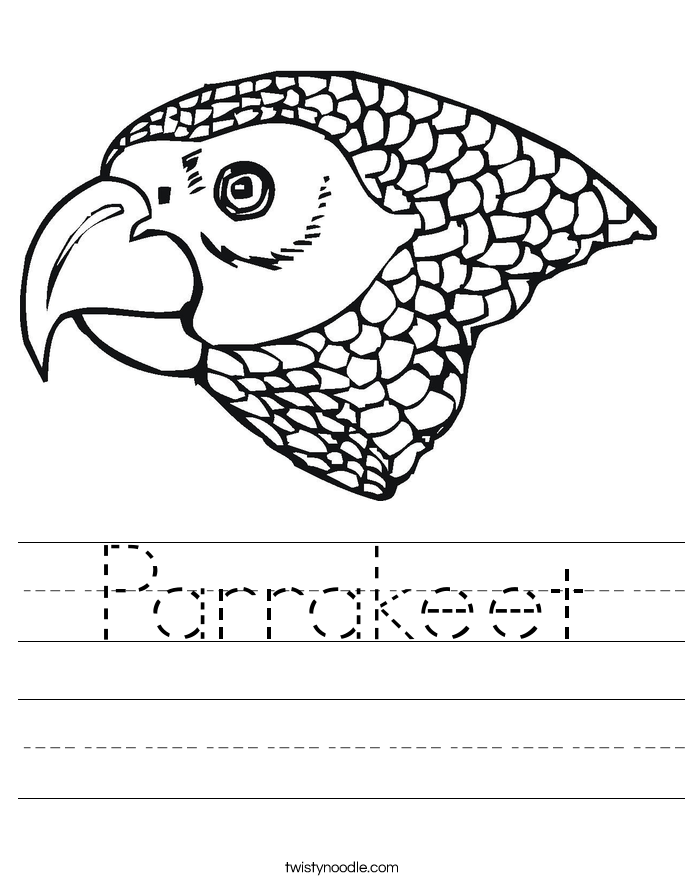 Parrakeet Worksheet