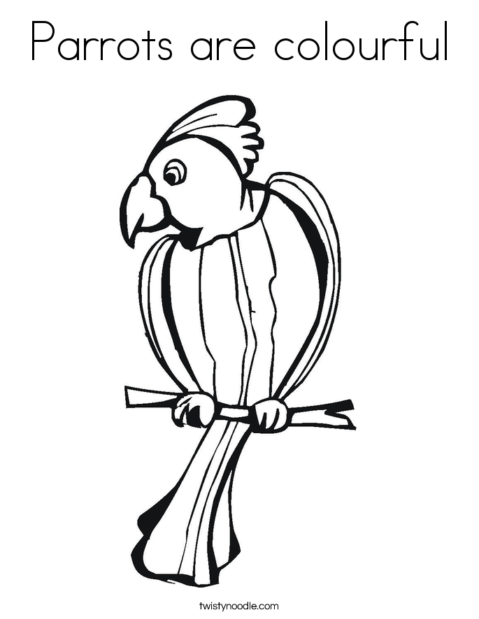 Parrots are colourful Coloring Page