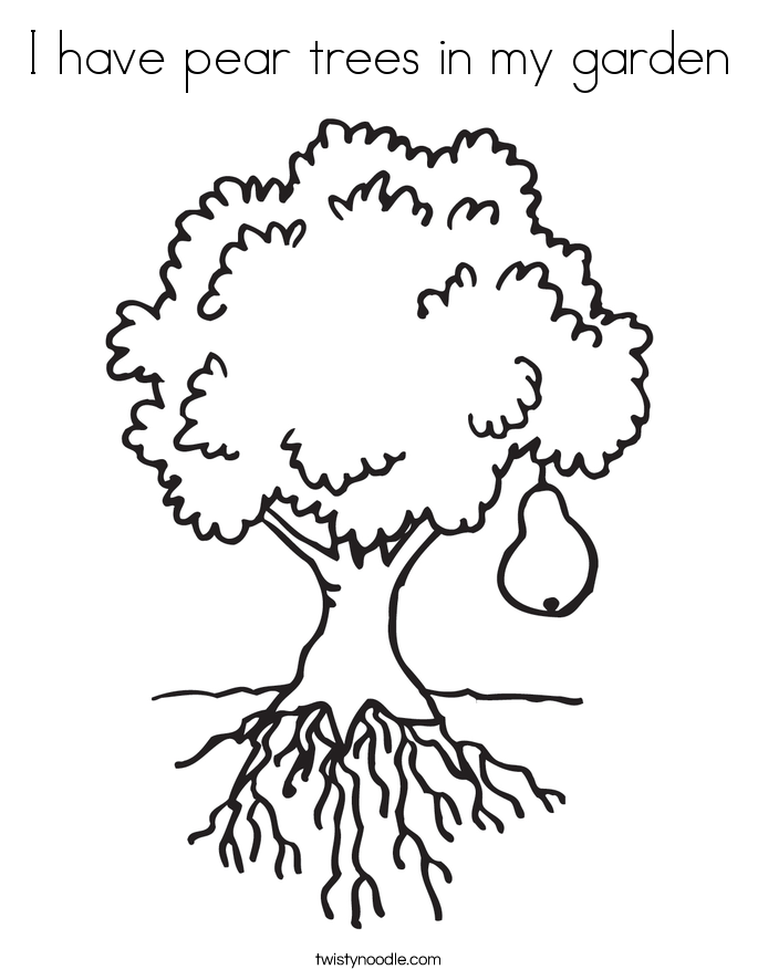 I have pear trees in my garden Coloring Page