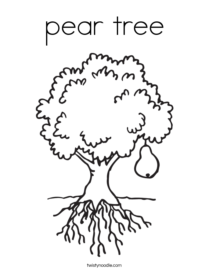 pear tree Coloring Page Twisty Noodle