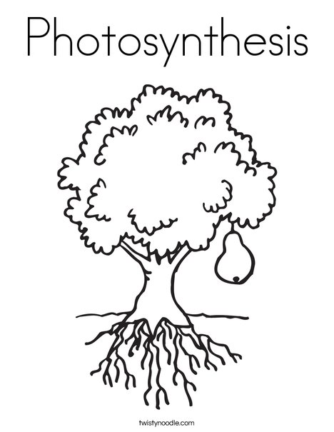 Photosynthesis Coloring Page - Twisty Noodle