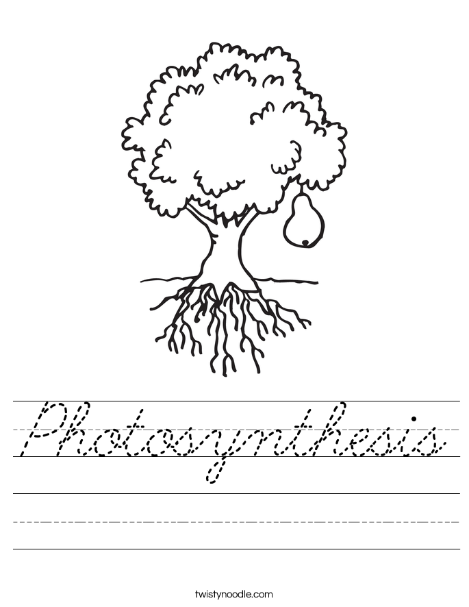 Photosynthesis Worksheet Cursive Twisty Noodle