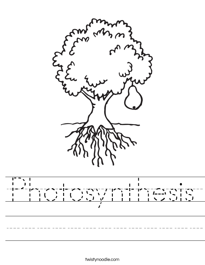 Photosynthesis Worksheet Twisty Noodle – Photosynthesis Worksheets Kids