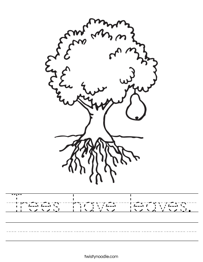 Trees have leaves. Worksheet