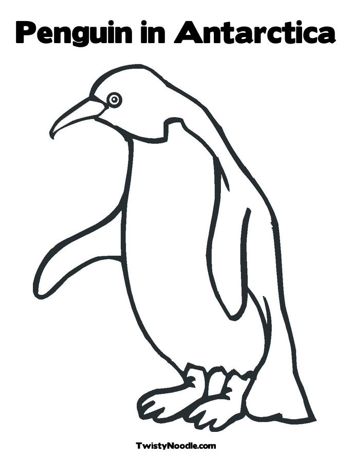 google images coloring pages penguin - photo#18